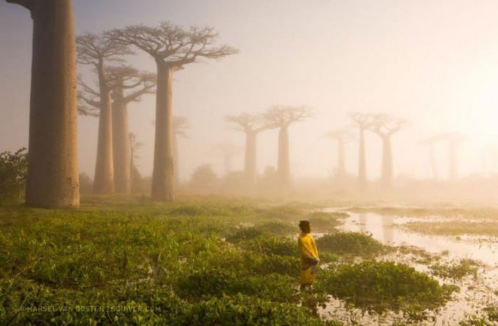 National Geographic-12