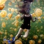 National Geographic Dergisinde Bu Yıl Yayınlanmış En iyi 20 Fotoğraf