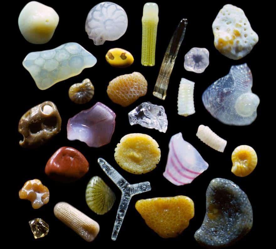 mikroskop-kum-taneleri-ilginc-bilgiler
