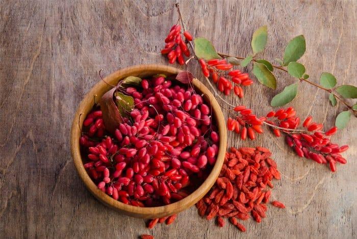 Goji Berry Faydaları ve Zararları Nedir