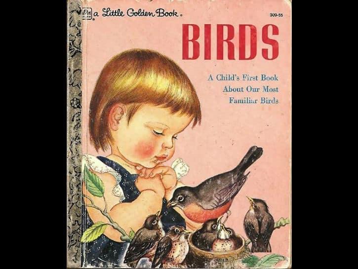 kuslar-birds-kitap