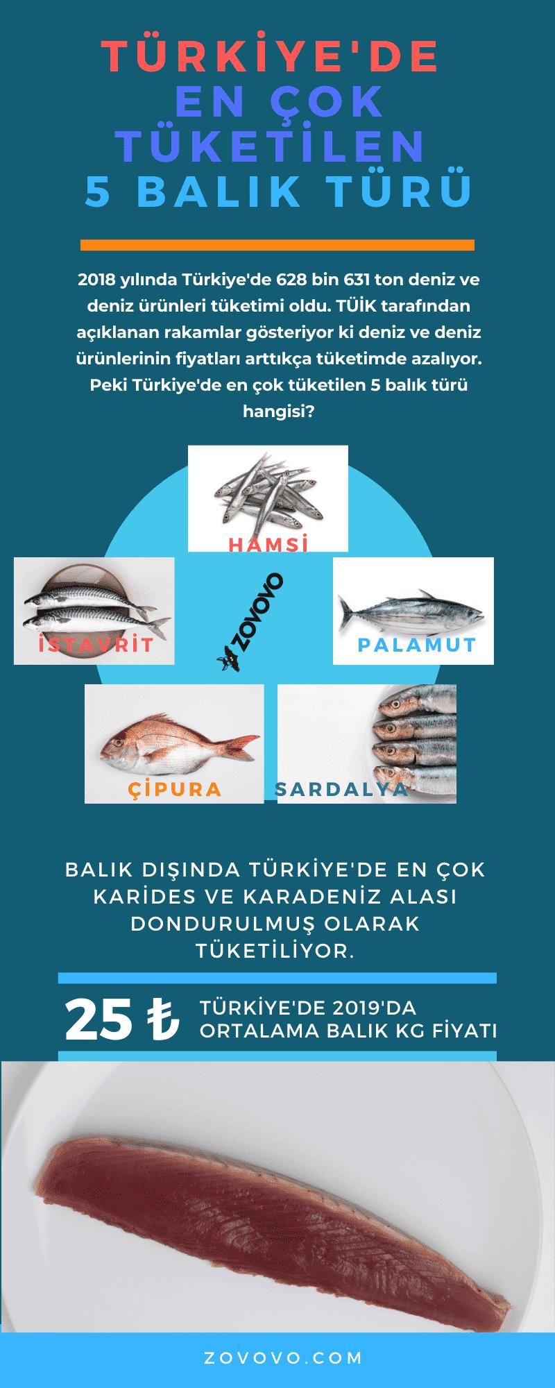 Türkiye'de En Çok Tüketilen Balık Türleri – İnfografik