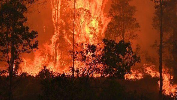 Sidney'de Hava Kirliliği Tehlikeli Seviyenin 12 Katına Yükseldi