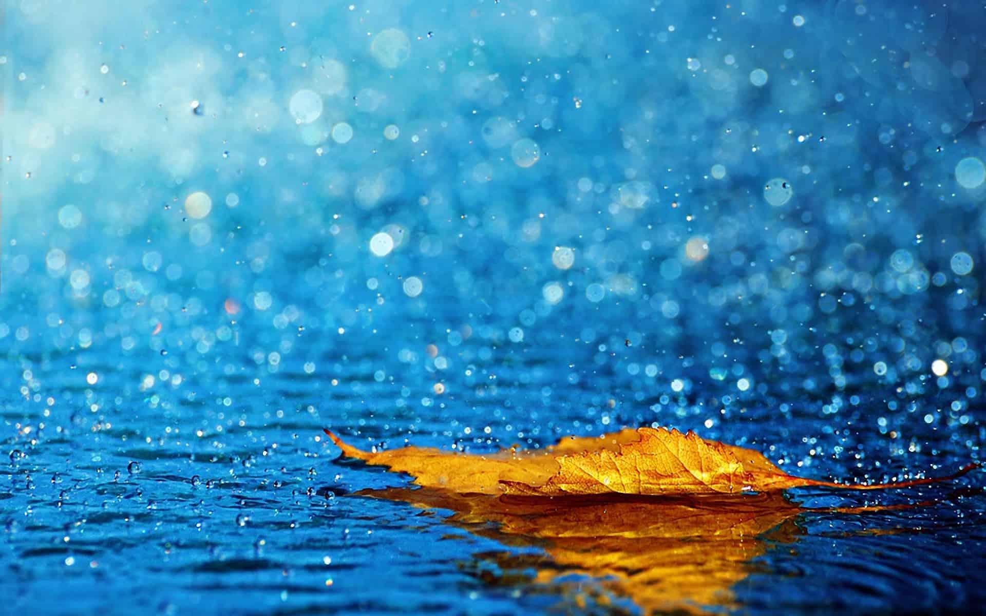 Yağmur Suyu İçmek Güvenli Mi?