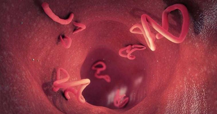 Kırmızı Eti Az Pişmiş Sevenler Dikkat: Ölümcül Olabilir!