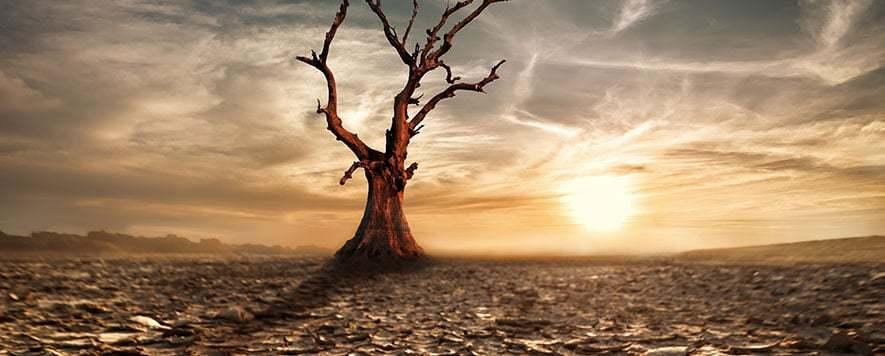 Kitlesel Olarak Yok Olmaktan Nasıl Kurtulatabiliriz?