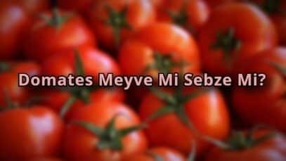 Domates Meyve Mi Sebze Mi?