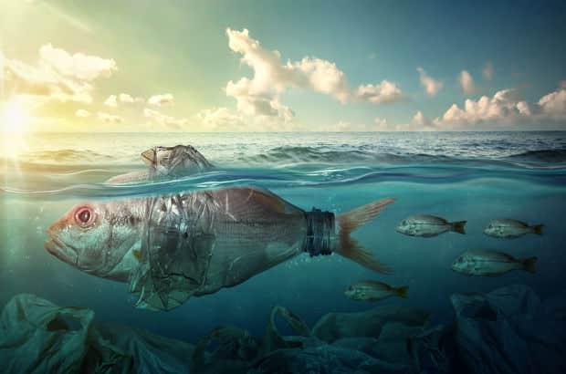 Tek Kullanımlık Plastik Deyip Geçmeyin! İşte Tek Kullanımlık Gerçekleri!