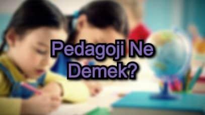 Pedagoji Ne Demek?