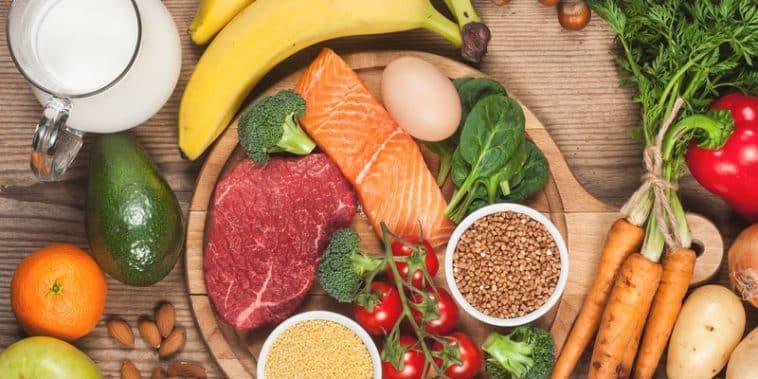 Holozoik Beslenme Nedir?